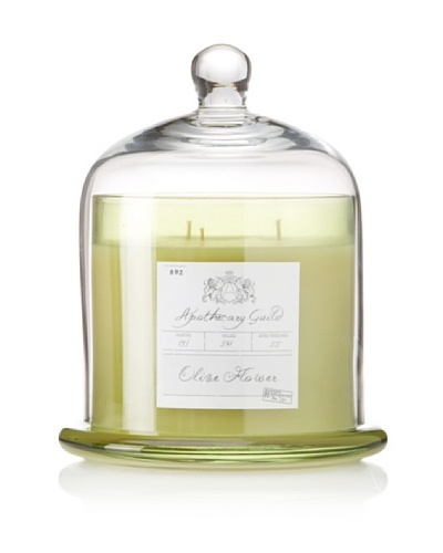 Apothecary Guild Candle Jar with Glass Dome, Olive Flower, Large