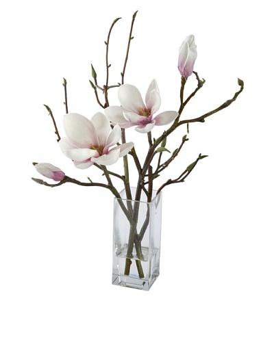 Magnolia in Glass [Orchid]