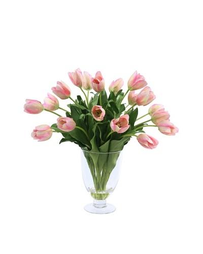 Tulip in Glass Vase, Pink
