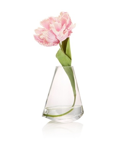 Pink Tulip in Water