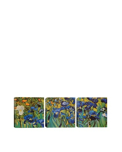 Irises by Vincent Van Gogh (Panoramic)
