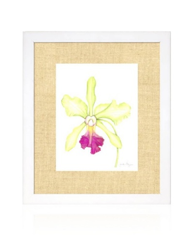 Orchid Beauty III, White/Bamboo