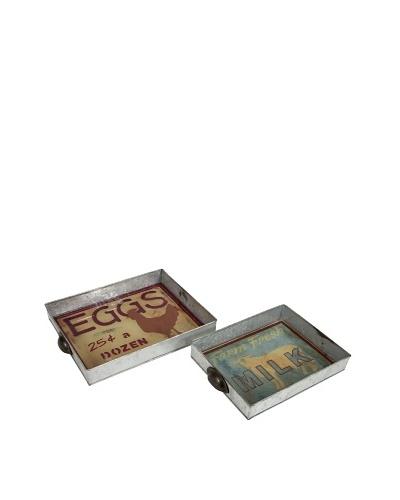Set of 2 Farmer Galvanized Glass Trays