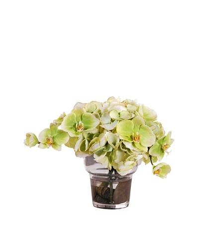 10 Hydrangea/Phalaenopsis in Glass Vase