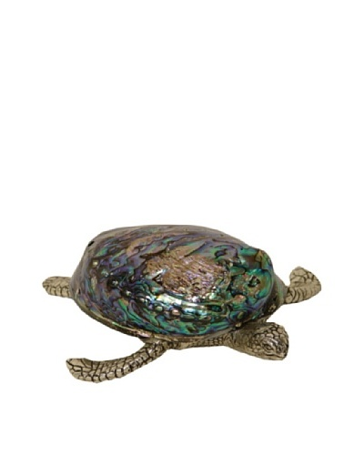 Silver Pearl Shell Turtle