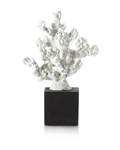 Mauritius Faux Coral on Wood Base, White/Black