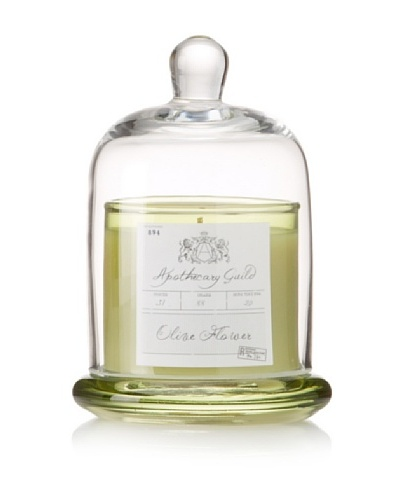 Apothecary Guild Candle Jar with Glass Dome, Olive Flower, Small