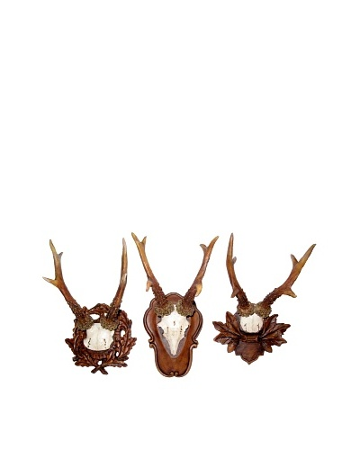 3-Piece Deer Antlers Wall Plaque Set