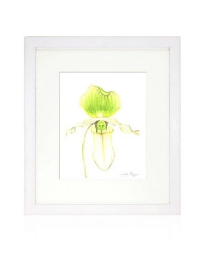 Orchid Beauty IV, White/White