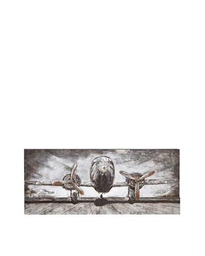 Iron 3-D Plane Wall Art I