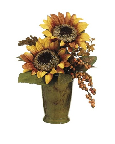 Sunflower and Berry in Terra Cotta Pot