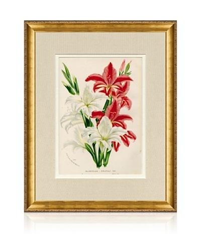 1873 Antique Botanical Print IV, Ornate Gold