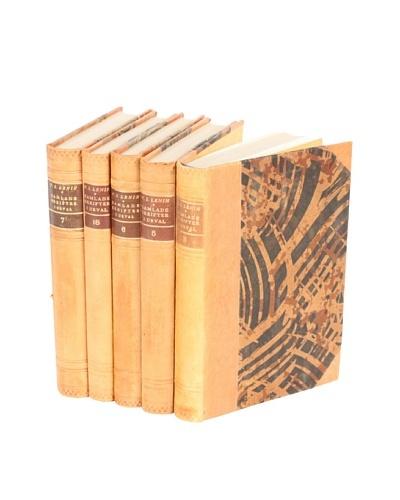 Set of 5 Vintage Leather Books II