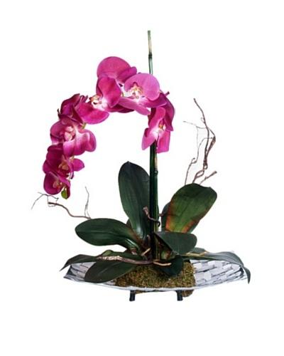 Fuschia Orchid Tray [Fuschia/Green]