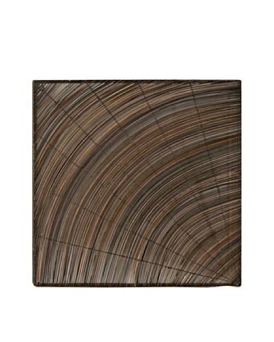 Palm Rib Swirl Wall Décor