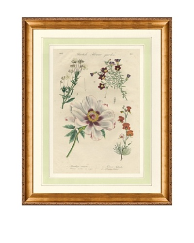 1837 Antique Hand Colored White Botanical Print IV, French Mat