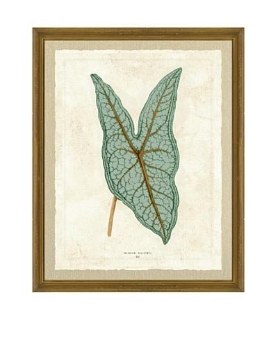 Green Plant Giclée Print I