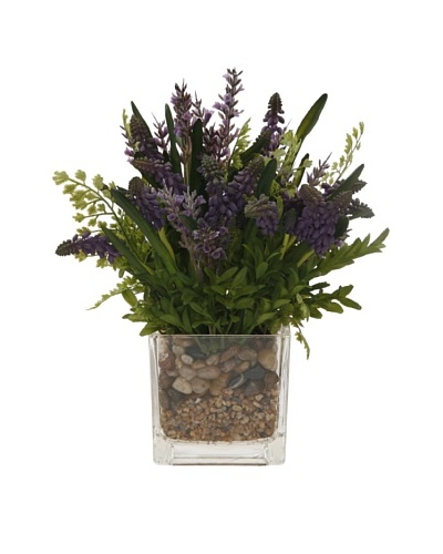 Muscari Lavender in Glass Vase