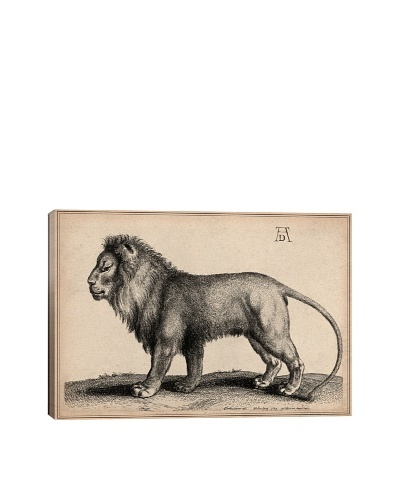 A Lion Standing by Wenceslaus Hollar Giclée on Canvas