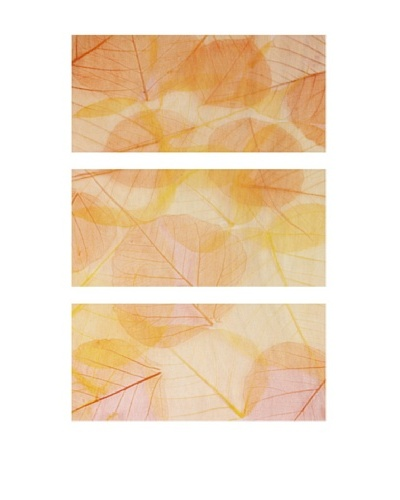 Colorful Leaves, Triptych