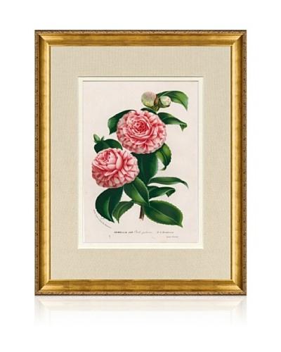 1873 Antique Botanical Print XI, Ornate Gold