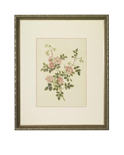 Flowers & Bouquets by John Edwards, 1940