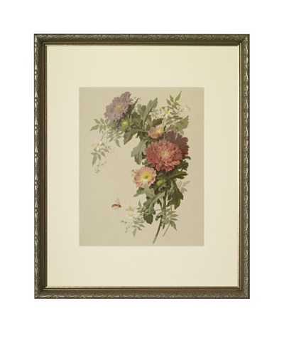 1880s Asters Floral Spray