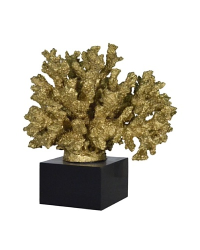 Gold Branch Coral on Black Base