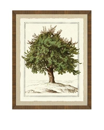 Tree Giclée Print I