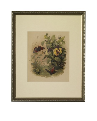 1880s Flowers & ButterfliesAs You See