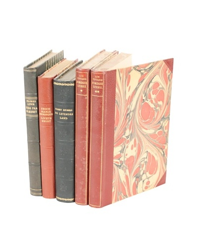 Set of 5 Vintage Leather Books VI