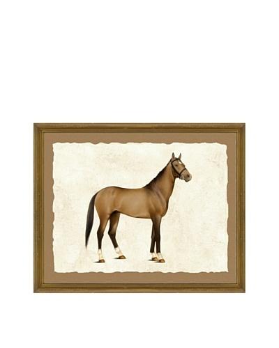 Horse Giclée Print I