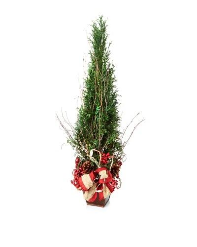 """20"""" Holiday Tree"""