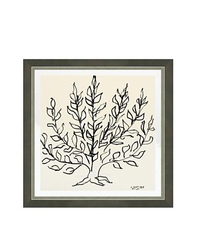 Henri Matisse: Le Buisson