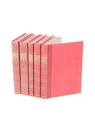 Set of 5 Vintage Leather Books V
