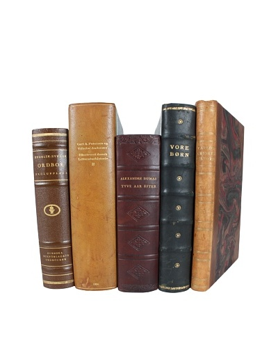 Set of 5 Decorative Leather Books, Multi