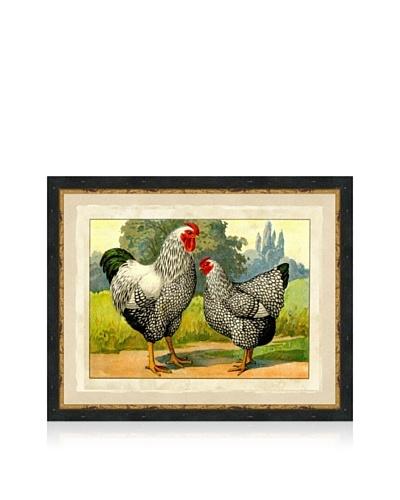 Barred Chicken Print II