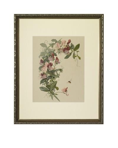 1880s Sweet Peas Floral Spray