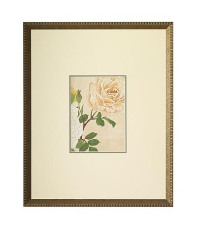 1918 Botanical Japanese Woodblock Roses