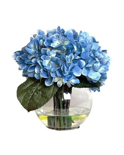 Blue Hydrangea In Water
