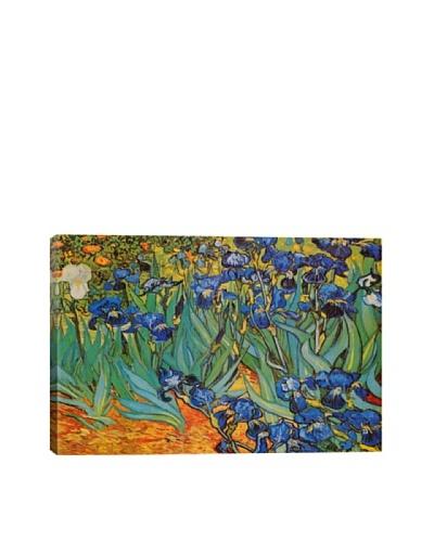 Vincent Van Gogh's Irises Giclée Canvas Print