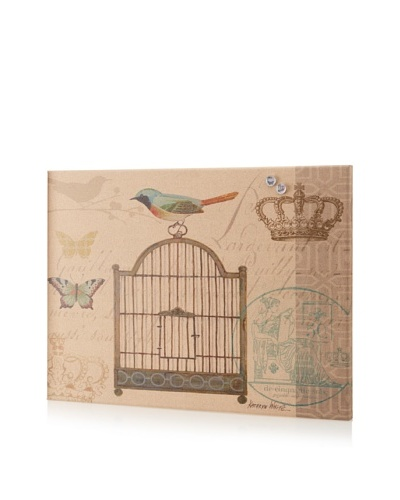 Kathryn White Birdcage Giclee on Cork Board