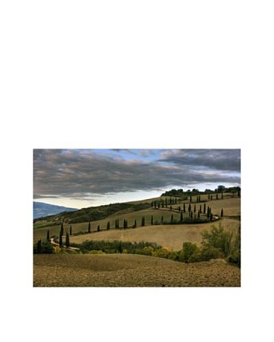 Maciej Duczynski Tuscan Hills