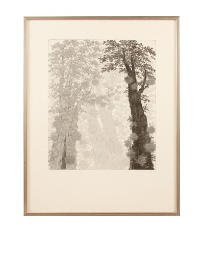 Tree Canopy Framed Artwork, Black/White