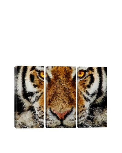 Animal Art Tiger Triptych By Maximilian San Giclée Canvas Print