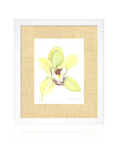 Orchid Beauty II, White/Bamboo