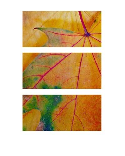 Autumn Color, Triptych