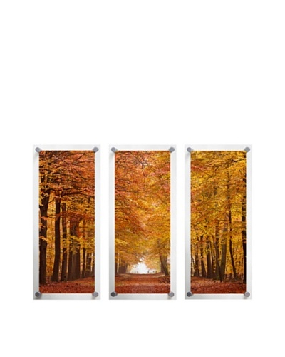 Trees in Autumn, Triptych