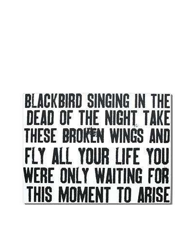 Blackbird, 18 x 24