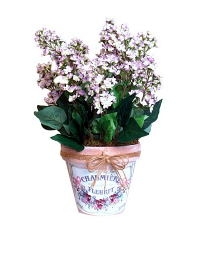 Lilacs In Clay Pot [Lavender/Green]